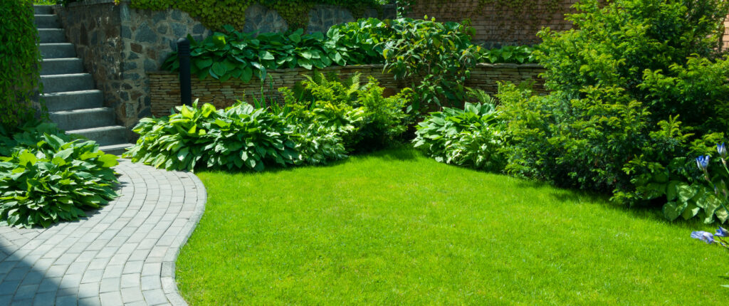 Vehreä nurmikko ja puutarha.